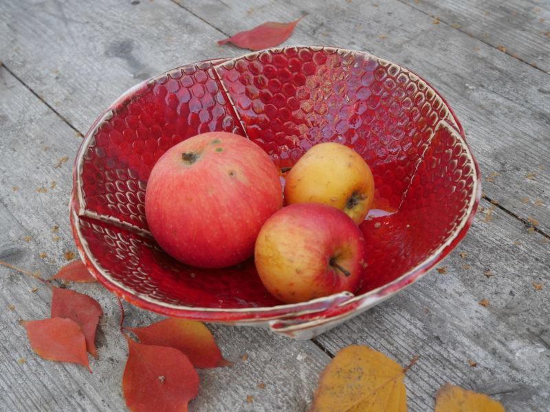 """Rote Schale mit Schlangenhaut - Serie """"Organic Bowls"""""""